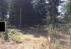 Działka na sprzedaż, Bieniewiec, 15000 m² | Morizon.pl | 7589 nr3
