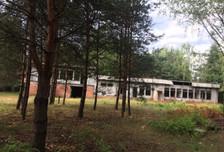 Działka na sprzedaż, Bieniewiec, 15000 m²