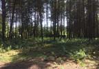 Działka na sprzedaż, Bieniewiec, 15000 m² | Morizon.pl | 7589 nr9