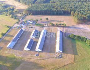 Fabryka, zakład na sprzedaż, Skoszewo Skoszewo, 4000 m²