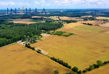 Działka na sprzedaż, Borkowo Lęborskie, 3501 m²