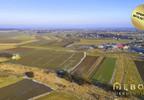 Działka na sprzedaż, Niepołomice, 3900 m² | Morizon.pl | 4994 nr2