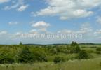 Działka na sprzedaż, Bukwałd, 8771 m²   Morizon.pl   7645 nr3