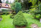 Dom na sprzedaż, Lądek-Zdrój Cicha 10, 271 m² | Morizon.pl | 4567 nr7