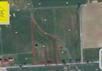 Działka na sprzedaż, Kurowo Braniewskie, 9384 m² | Morizon.pl | 3469 nr2