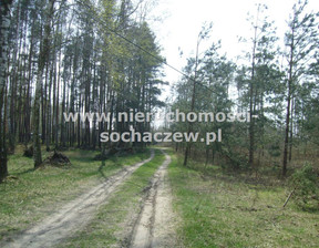 Działka na sprzedaż, Joachimów-Mogiły, 8774 m²