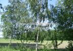 Działka na sprzedaż, Witoldów, 3000 m² | Morizon.pl | 4353 nr5