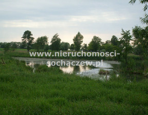Działka na sprzedaż, Brzozów A, 65400 m²