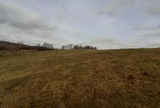 Działka na sprzedaż, Dźwierzuty, 3017 m²