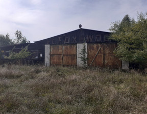 Działka na sprzedaż, Linowo, 7000 m²