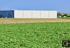 Morizon WP ogłoszenia | Działka na sprzedaż, Blizne Jasińskiego, 7000 m² | 2338