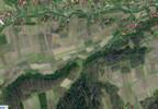 Działka na sprzedaż, Niedźwiada, 10462 m² | Morizon.pl | 6674 nr2