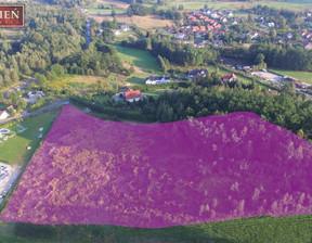 Działka na sprzedaż, Jelenia Góra Czarne, 17169 m²