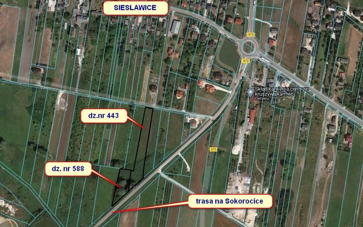Działka na sprzedaż, Siesławice, 5000 m²   Morizon.pl   2305