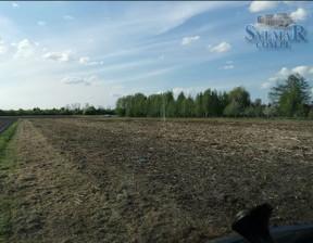 Działka na sprzedaż, Nowe Boryszewo, 1400 m²