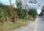 Działka na sprzedaż, Baniocha, 6000 m² | Morizon.pl | 7433 nr4