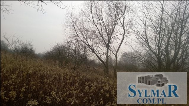 Morizon WP ogłoszenia | Działka na sprzedaż, Moczydłów, 9900 m² | 7587