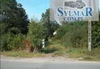 Działka na sprzedaż, Baniocha, 6000 m² | Morizon.pl | 7433 nr2