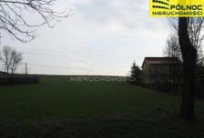 Działka na sprzedaż, Prandocin-Wysiołek, 9700 m²