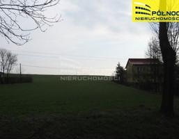 Morizon WP ogłoszenia   Działka na sprzedaż, Prandocin-Wysiołek, 9700 m²   6543