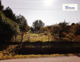 Morizon WP ogłoszenia | Działka na sprzedaż, Minoga, 4603 m² | 1216