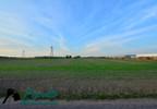 Działka na sprzedaż, Kostrzyn, 47500 m²   Morizon.pl   6309 nr5