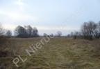 Działka na sprzedaż, Chlebnia, 17986 m² | Morizon.pl | 7788 nr2