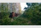 Działka na sprzedaż, Budy-Grzybek, 15851 m²   Morizon.pl   4259 nr4