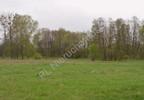 Działka na sprzedaż, Grądy, 13505 m²   Morizon.pl   5370 nr7