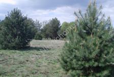 Działka na sprzedaż, Żelechów, 20870 m²