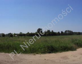 Działka na sprzedaż, Skuły, 58700 m²