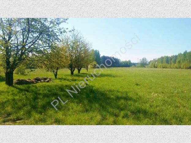 Działka na sprzedaż, Redlanka, 54740 m²   Morizon.pl   2194
