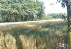 Morizon WP ogłoszenia | Działka na sprzedaż, Ruda-Pniewnik, 4460 m² | 5589