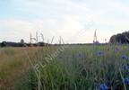 Działka na sprzedaż, Bojmie, 3294 m² | Morizon.pl | 7764 nr2