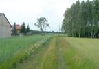 Działka na sprzedaż, Bojmie, 3316 m²   Morizon.pl   5575 nr4