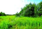 Działka na sprzedaż, Borki, 5000 m² | Morizon.pl | 8822 nr2