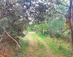 Morizon WP ogłoszenia | Działka na sprzedaż, Borki, 3300 m² | 4881