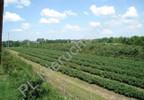 Działka na sprzedaż, Grójec, 23200 m² | Morizon.pl | 3983 nr5