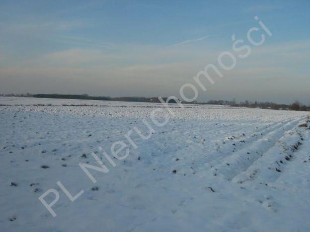 Działka na sprzedaż, Żuków, 13600 m² | Morizon.pl | 6218