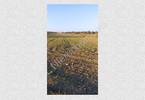 Morizon WP ogłoszenia | Działka na sprzedaż, Bramki, 7067 m² | 8179