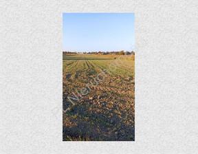 Działka na sprzedaż, Bramki, 7067 m²