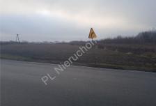 Działka na sprzedaż, Domaniew, 25700 m²