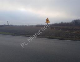 Morizon WP ogłoszenia | Działka na sprzedaż, Domaniew, 25700 m² | 8591
