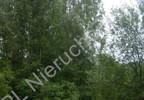 Działka na sprzedaż, Mościska, 33900 m² | Morizon.pl | 2167 nr3