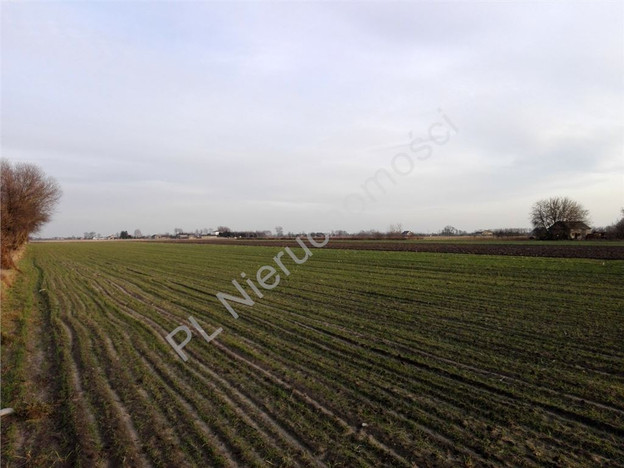 Morizon WP ogłoszenia | Działka na sprzedaż, Bieniewo-Parcela, 19000 m² | 4539