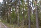Działka na sprzedaż, Rokietnica, 44017 m²   Morizon.pl   6809 nr4