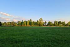 Działka na sprzedaż, Orzeszyn, 14565 m²