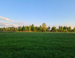 Morizon WP ogłoszenia   Działka na sprzedaż, Orzeszyn, 14565 m²   6940