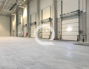 Magazyn, hala do wynajęcia, Mirków, 7560 m²