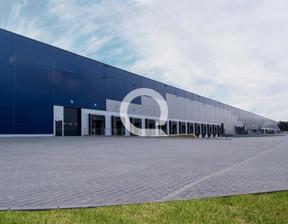 Magazyn, hala do wynajęcia, Stryków, 6000 m²